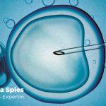 IVF oder ICSI – was ist der Unterschied?